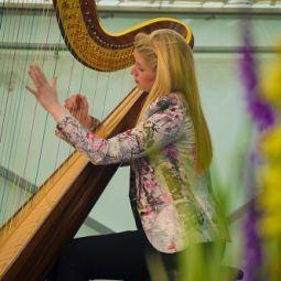 claire jones harpist