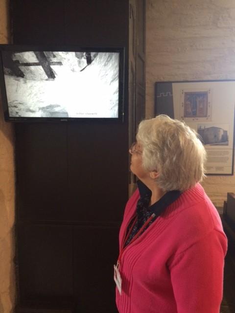 Steward Beth Rowley takes a look at the batcam