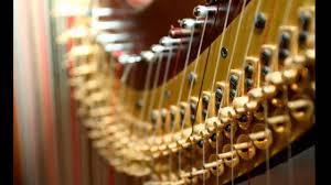 Up close shot of a harp.